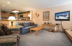 Liftside Condominiums 20 - Spacious ground floor property with ski area views, walk to slopes!
