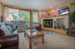 Liftside Condominiums 203 - New appliances, new decor, ski area views, walk to slopes!