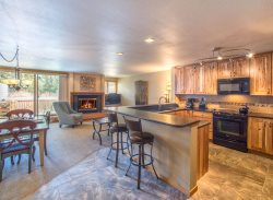 Liftside Condominium 21  - Completely remodeled, updated appliances, ski area views, walk to slopes!