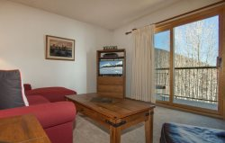 Snowdance Condominium A303 - Walk to slopes, updated bathroom, Mountain House!