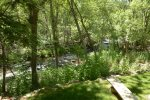 Views of the creek and back yard