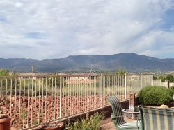 55+ Community Contemporary Ranch Style Home  WHISPER - S056