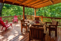Bear's Den -Cozy, All Paved Access, Convenient to Ellijay and Blue Ridge