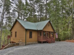 Deer Path Cabin, Beautiful, spacious cabin