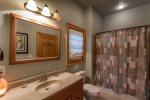 Master Bath with tub/shower combo on terrace level