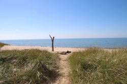 Surf Cottage - Quintessential Cottage on Lake Michigan with Pristine Beach