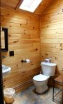Cathedral Pine Bathroom with Skylight