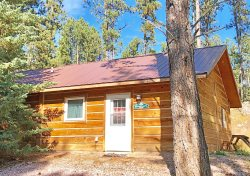Charming Cabin Near Historic Downtown Custer