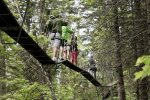Explore the heights on the Treetop Adventure on the Mountain