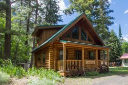 Newer Log cabin with vintage charm
