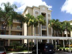 8056 Queen Palm Lane #611