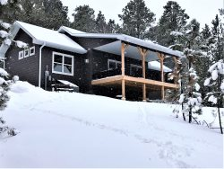 New!! Gnarly Pine Cabin - 2BR,2Bath 4 miles from Deadwood!