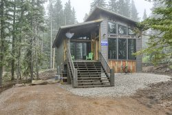 New Venture- Brand New Cabin by Terry Peak