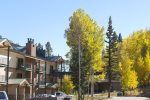 Fallcolor aspens at Durango Colorado vacation rental condo at Purgatory Resort