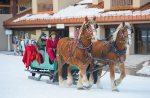 Horse drawn sleigh ride Winter activities Purgatory Resort Durango Colorado
