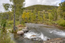 Riverside Fishing Cabin near Durango Colorado