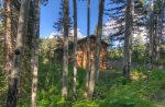 Wooded seclusion at Lake View House vacation rental home Durango Colorado