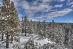 Winter snow in Rocky Mountain forest at Durango Colorado vacation rental home known as Cliff View House