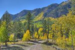 Fall Color views from Eagles Nest vacation rental home in Durango Colorado