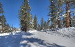 Snowy neighborhood roads at Castle Rock Retreat vacation rental home