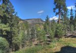 Durango Colorado vacation rental home near Purgatory Resort forest views