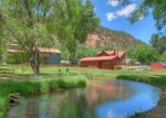 Pond at Big Blue House vacation rental home in Durango Colorado