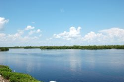 Breathtaking Water Views! (BCK N-1)