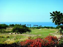 Spectacular Wai'ula'ula Condo with stunning Ocean views