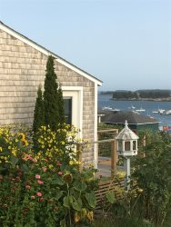 EAST COTTAGE - Stonington