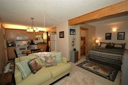 NEW 2017!  Peaceful, Rustic, Modern Condo, Beautiful Views, Walking Distance to Skiing!