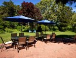 Outdoor dining for 10 plus chaise lounges