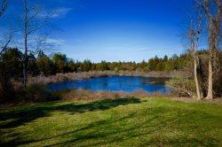 Bird Lover's Haven - Pondfront Cottage Retreat