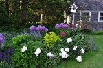 Mature gardens and beautiful flowers throughout the summer