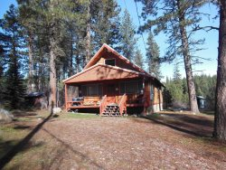 Comfy Cabin the Pines