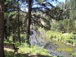Cute Lil` Cabin on the Confluence of the Payette River