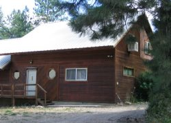 Family Friendly Cabin in the Pines with Shared Hot Tub and Geothermals Pools!