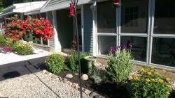 OGUNQUIT: Pristine Condo Available for Winter Rental $1,000 per month includes plowing, water and sewer