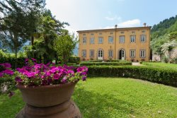 Fully Renovated Private 12 Bedroom Estate