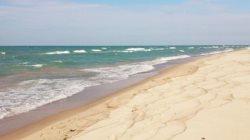 Pathway - Union Pier McKinley Beach Rental