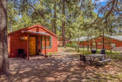Rustic Adventure w/ Historic Log Cabin / Forest Views / 20 minutes from Flagstaff