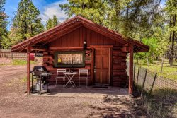 Charming & Historical 1 Room Log Cabin / Forest Views/ 20 Minutes from Flagstaff