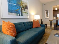 One Bedroom Upgraded Gem in Alexandria`s Newest Luxury Highrise