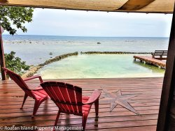 Private Oceanfront Home with dock on Coral Reef