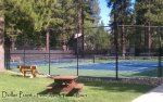 Dollar Point Tennis Courts