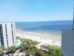 Ocean view one bedroom at BlueWater! 1307