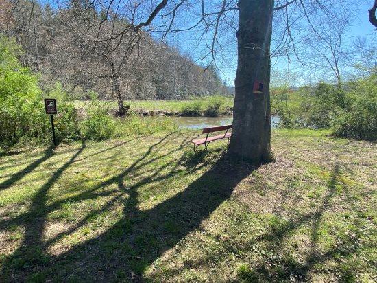 Floor Plan for Meadow Cabin at Deerwoode Reserve