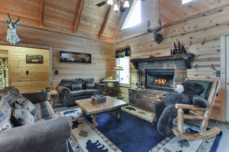 Astounding Branson Cabins Bear Necessity Download Free Architecture Designs Meptaeticmadebymaigaardcom