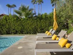Palm Springs Mid Mod Lemon Crush