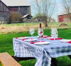 Family-friendly farmhouse with firepit walking distance to the Waring House in Prince Edward County