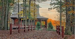 A Cottage in the Woods Retreat- Blue Ridge, GA